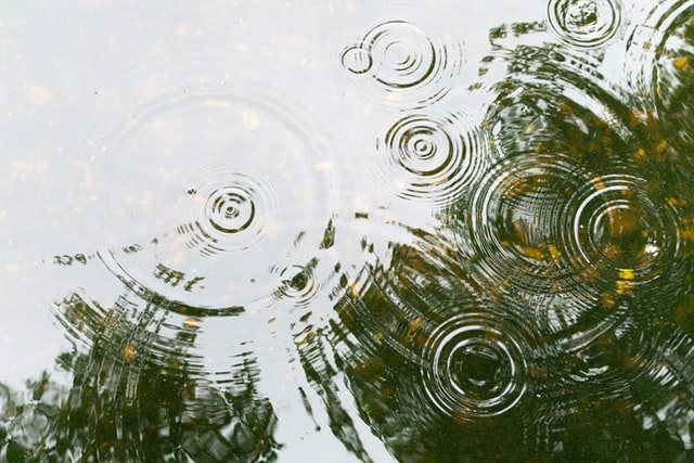 the ripple effect in group social media activism